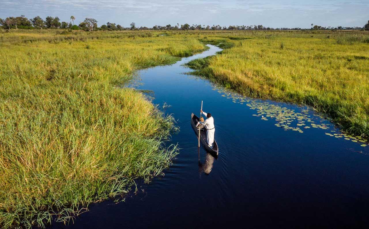 More water based safari action!