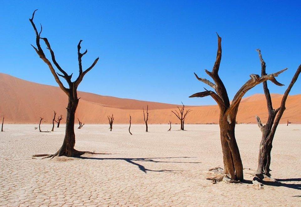 The calm beauty of the Namibian Desert